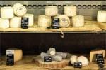 Preisschild-Plastik-Käse